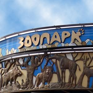 Зоопарки Коврова